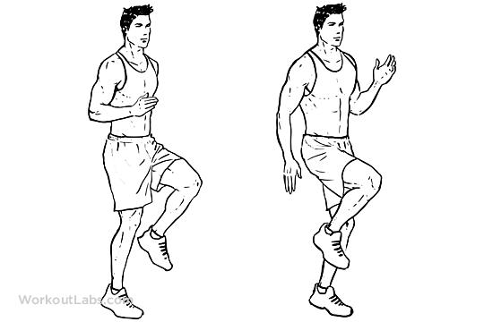 High Knees / Front Knee Lifts / Run / Jog on the Spot