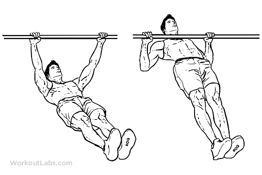 Chest Dumbbell Exercises Without Bench