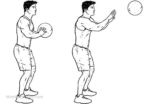 Medicine Ball Chest Pass  WorkoutLabs