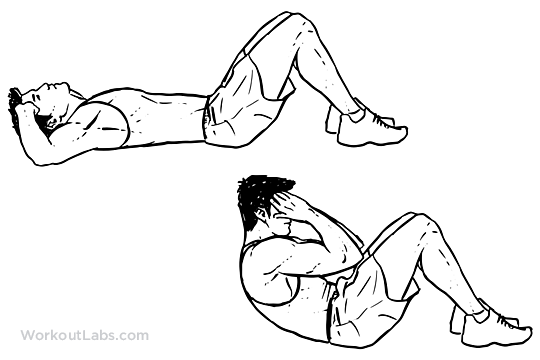 horse neck diagram electrical control panel wiring sit-ups | workoutlabs
