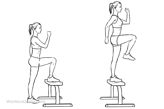 step up with knee raise gallery
