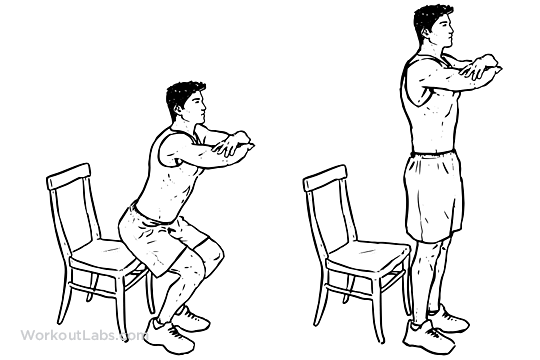 chair sit to stand exercise two person camping squat | illustrated guide - workoutlabs