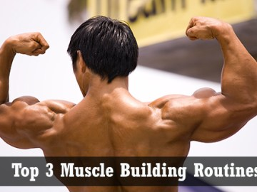 Top 3 Muscle Building Routines