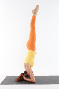 Salamba_Sirsasana_-_Supported_Headstand