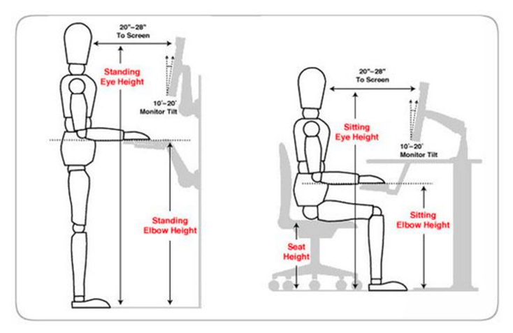 ergonomic chair guidelines gray and white height adjustability is key to