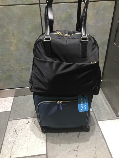 luggage for traveling for work