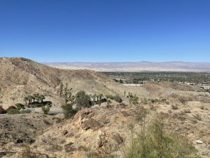 View of Palm Springs