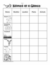 Biome Graphic Organizer Worksheets