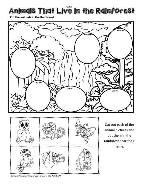 Jungle Animals Worksheet Worksheets