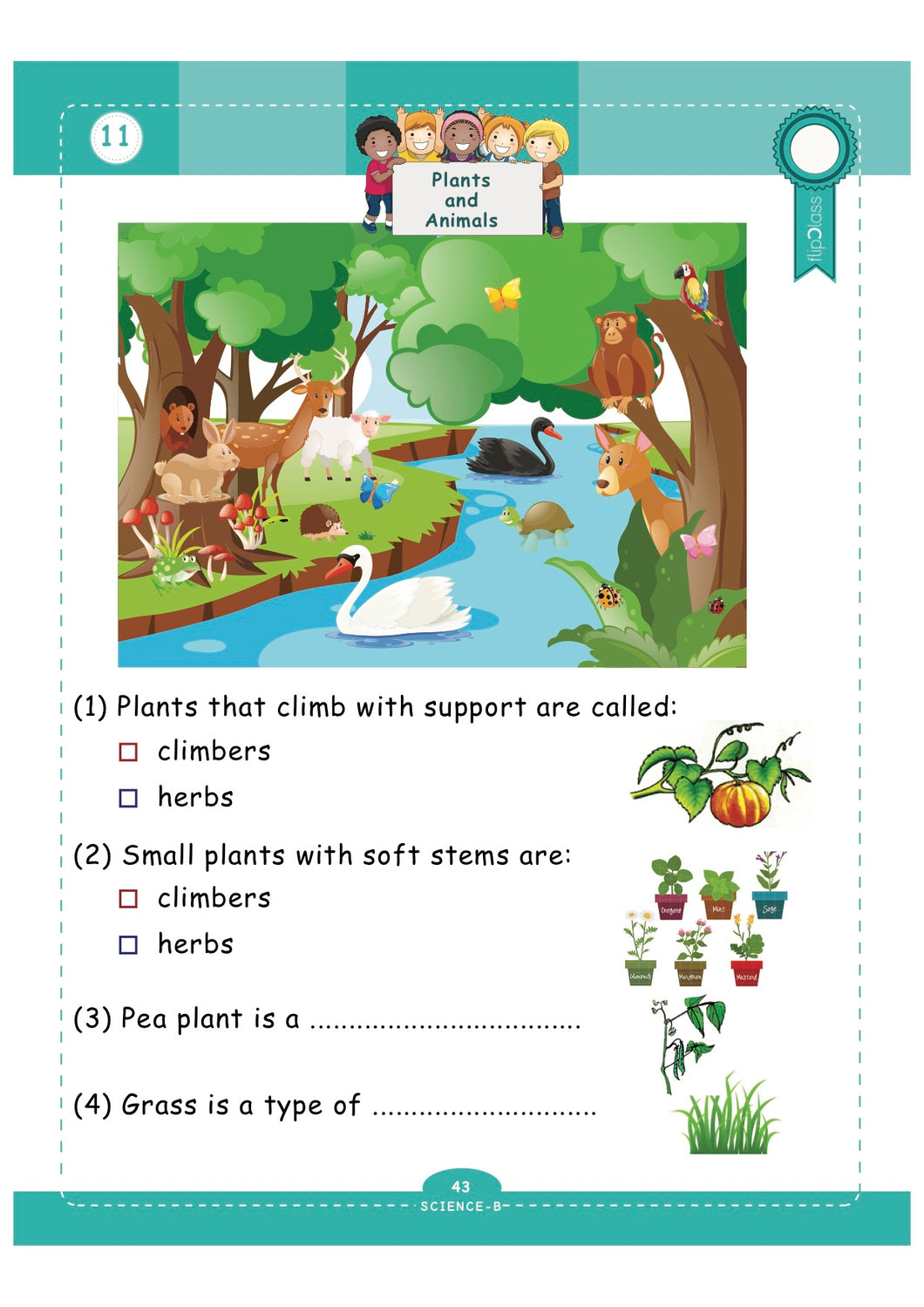 hight resolution of 10 Best 1st Grade Science Worksheets Plants images on Worksheets Ideas