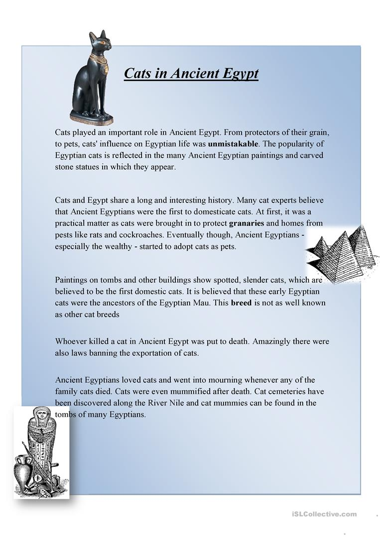 medium resolution of 6 Best 6th Grade Ancient History Worksheets images on Worksheets Ideas
