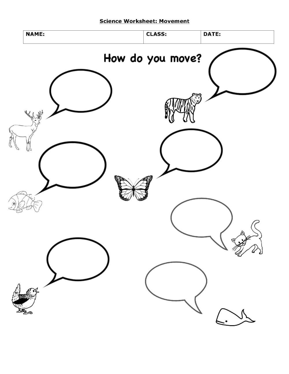 medium resolution of How Animals Move   Science Worksheets