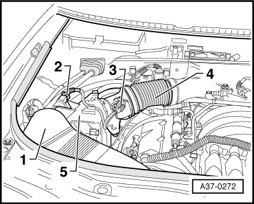 Bmw Wiring Harness Connectors Male. Bmw. Auto Wiring Diagram