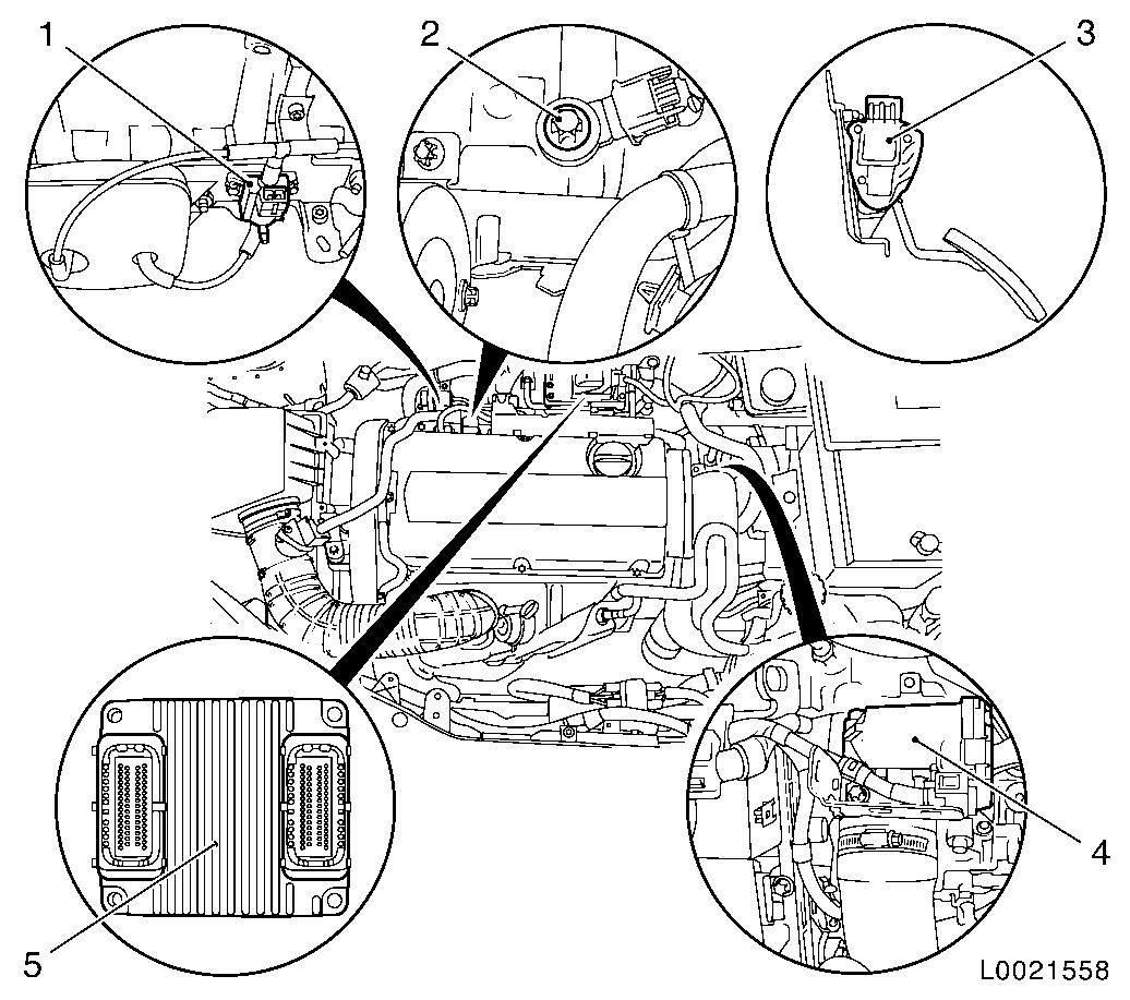 Suzuki Diagrams : 2002 Suzuki Xl7 Fuse Box Location