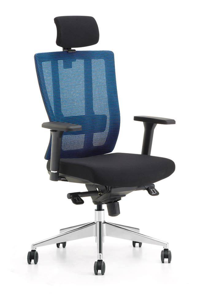 ergonomic chair in pakistan baby 3 months office chairs workspace lumber adjuster with supporting by