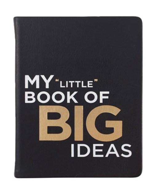 My Little Book of Big Ideas