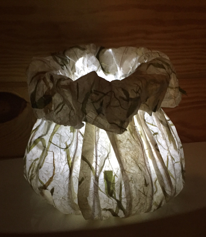 Paper Lantern by Susi Hall