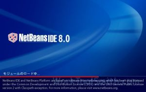 netbeans review 001