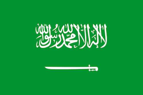 Flag of Saudi Arabia - World Council for Gifted and Talented Children Delegate