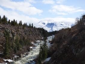 World Oyster, Yukon river