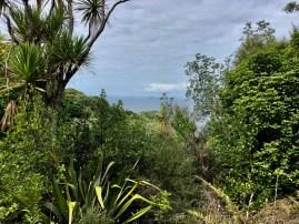 View from Tiritiri Mantangi