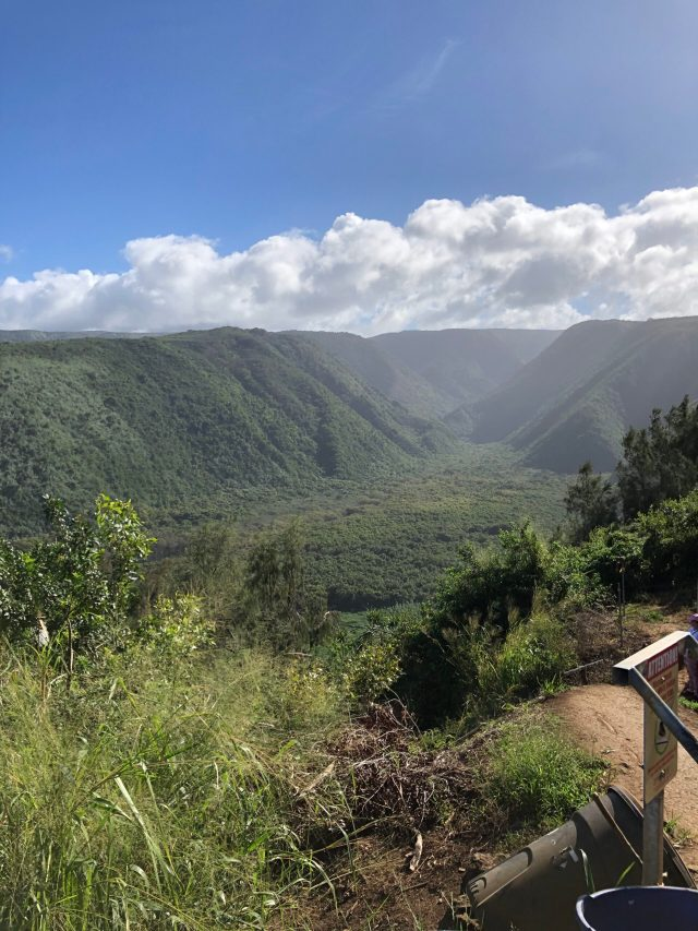 Best Things to Do on the Big Island: View inland from the Pololu Valley Lookout
