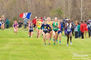 2016 NCAA Cross Country Championships