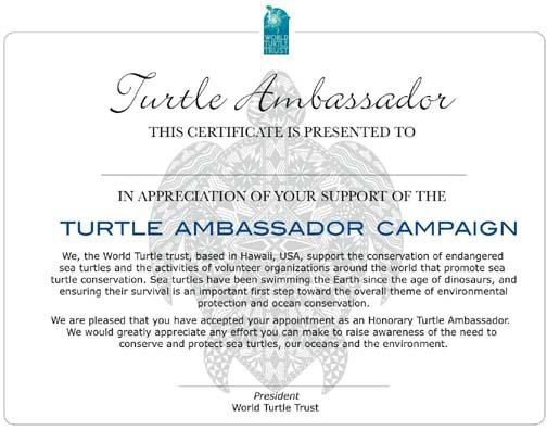 Turtle Ambassador Program, from World Turtle Trust