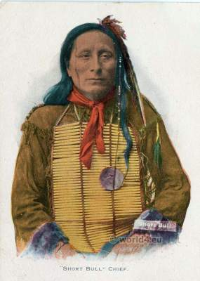 Indian chief costume. Sioux dress. Eagle feather bonnet. Native American dresses and clothing