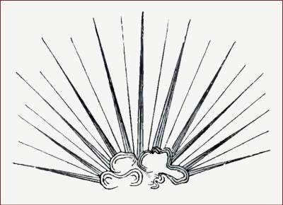 Middle ages accessoires of nobility. Medieval King of England