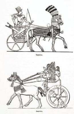 Assyrian and Egyptian Charriots