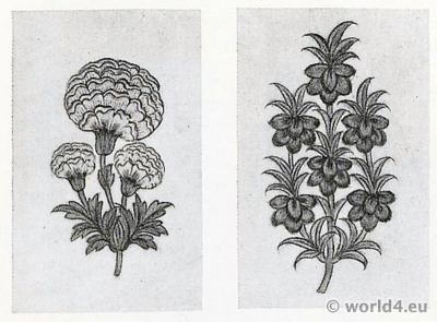 Plant Drawings. India Cotton Printers. Pattern Book. Traditional Indian fabrics. Textil design