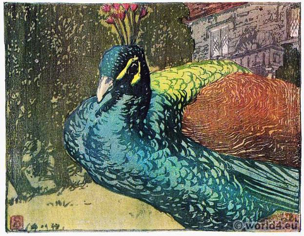 Art nouveau, painting, peacock, William Seaby
