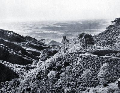 Tea garden Kurseong. Rivers Balasun, Mahanadi and Teesta. Darjeeling India. View on Himalaya. J. Burlington Smith.