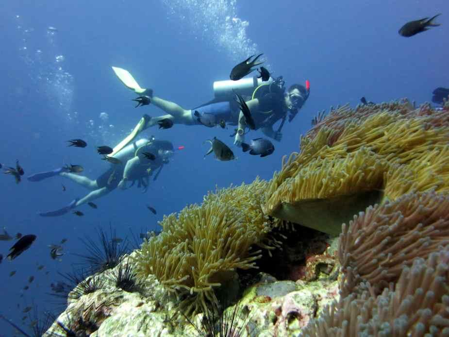 Plongée Asie