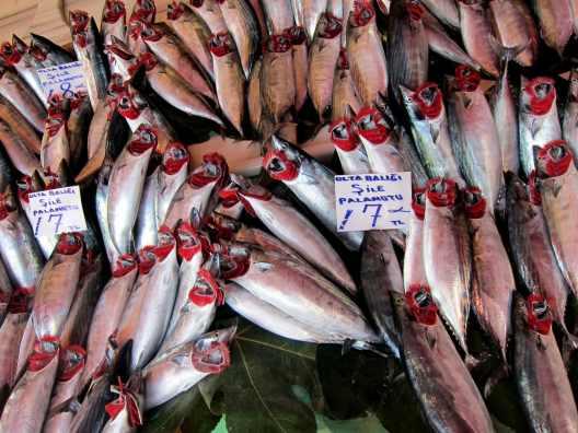 fishmarket karaköy