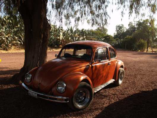 "the ""vocho"" beetle car in Teotihuacan North of Mexico city"
