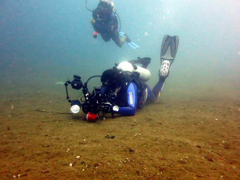 Underwater photography muck diving Dumaguete Dauin Philippines