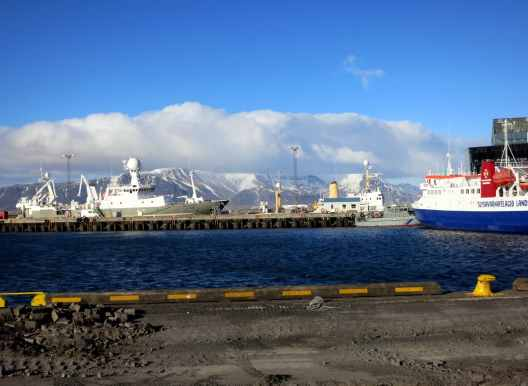 Reykjavik port Iceland