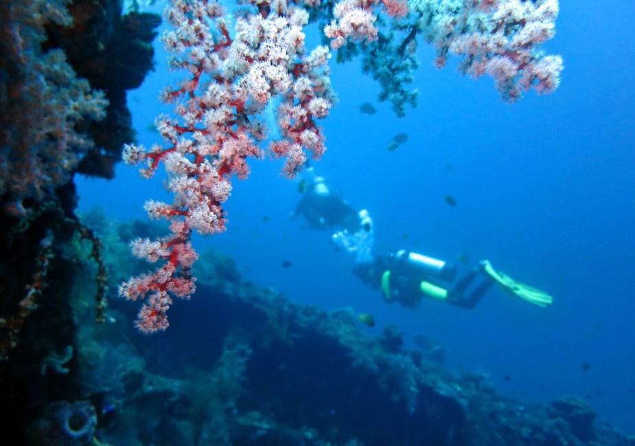 Diving in Tulamben - Liberty shipwreck - Bali Indonesia