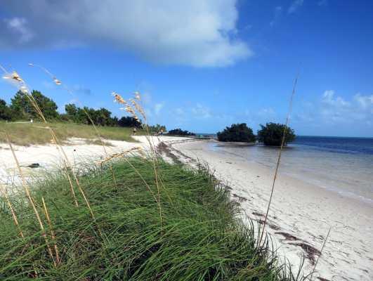 Curry Hammock State Park Florida Keys