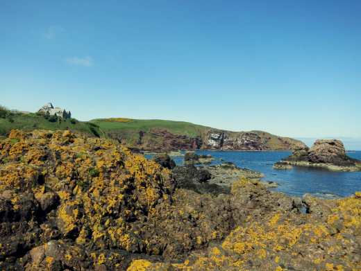 View St. Abbs Head Scotland