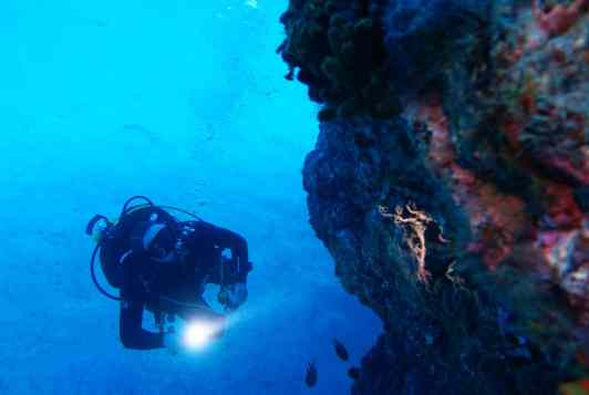 Scuba diving Tenerife Canary Islands