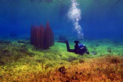 scuba diving by day Capodacqua Lake Italy