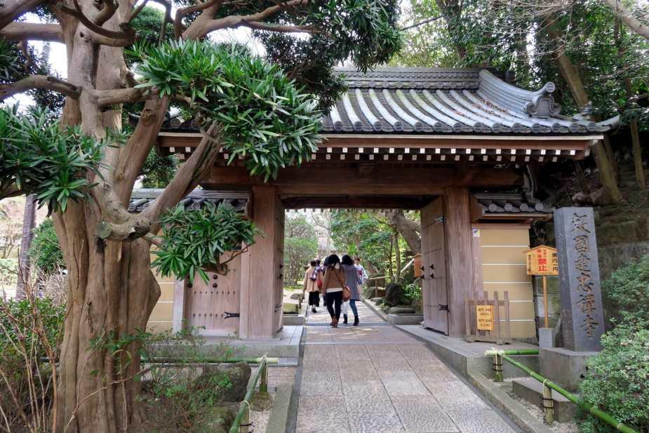 Hokokuji Temple Kamakura Japan