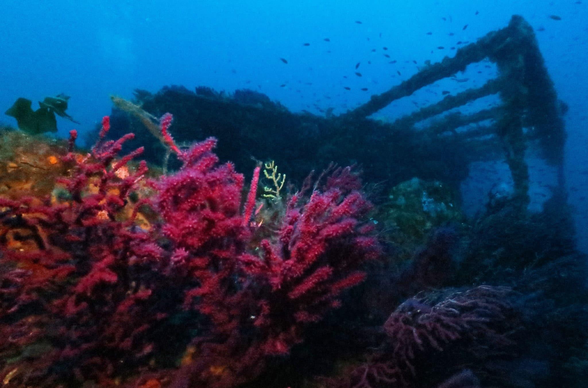 Shipwreck Le Grec Var France