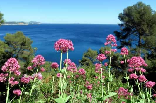 Cap Sicié Six-Four-les-plages France
