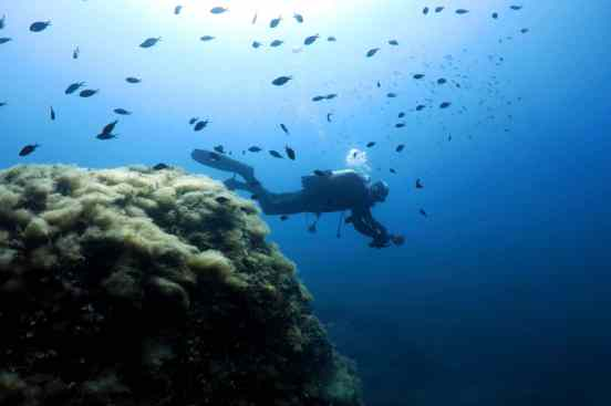 Scuba Diving Golfe Juan French Riviera