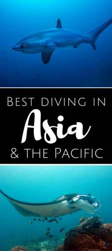 Best diving in Asia Pacific  pin2