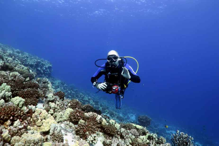 scuba diving in Middle Reef Molokini Crater Maui Hawaii USA